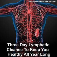 Three Day Lymphatic Cleanse To Keep You Healthy All Year Long - Health Detox Week Detox Diet, Detox Diet Drinks, Detox Diet Plan, Detox Foods, Colon Cleanse Detox, Natural Colon Cleanse, Cleanse Diet, Natural Detox, Stomach Cleanse
