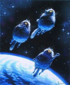 Space cats! <3<3<3FAB<3<3<3