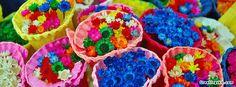 Colorful Flowers Facebook Timeline Cover   Greetingskit.com