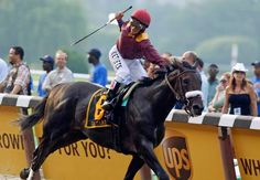 Da' Tara spoils Big Brown's Triple Crown bid in the 2008 Belmont S. (G1) by Tiznow out of Torchera by Pirate's Bounty