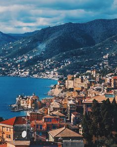 Camogli Italy (only 30 minutes away from cinque terre!)
