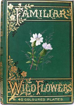 Familiar Wild Flowers by F. Edward Hulme, London, Paris & New York: Cassell and Company, Limited 1891-94 (5 vols) | Beautiful Books