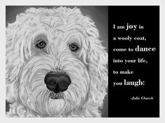 A Doodle is full of personality and will make you smile! Labradoodles are said to be clowns