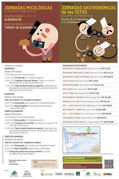 Jornadas Micológicas y Gastronómicas de las setas en la Sierra de Albarracín.Otoño 2013.