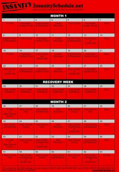 Download PDF - Insanity Workout Schedule and Insanity Workout Sheets