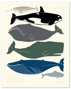 Google Image Result for http://littlewillow.com/wp-content/uploads/2009/06/print_whales.jpg