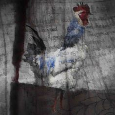 Rooster, Peggy Washburn, Encaustic/Mixed Media on Wood, 24x24, 2013 lindahodgesgallery.com