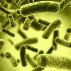Bio-warfare: Botulinum Toxin Type H- the Deadliest Toxin On Earth