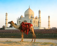 Agra, India | agra india is also known as agraban so named in the mahabharat an epic ...