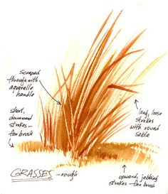 Make use of that scraping thing on tall grasses! Watercolor Painting Techniques, Watercolour Tutorials, Watercolor Sketch, Painting Lessons, Watercolor Landscape, Watercolor Flowers, Painting & Drawing, Watercolor Paintings, Painting Grass