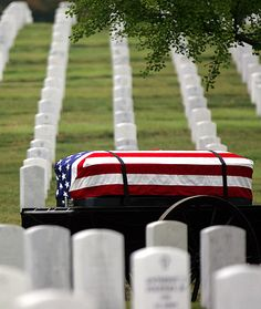 Arlington National Cemetary - Memorial Day - A Day of Remembrance - They gave their lives so that we could be free.  God Bless the United States of America and those that serve so proudly.