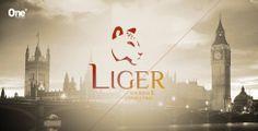 Liger - Turismo e Consultoria #onetofour #identidadevisual #identidade #logotipo