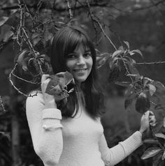Chantal Goya getting stuck in a tree.