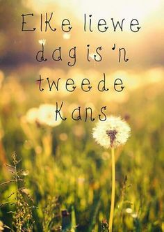 Elke dag is 'n tweede kans... #Afrikaans #NewBeginnings                                                                                                                                                                                 More