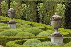 Ornamental urns and cotton lavender in the Parterre Garden at Seaton Delaval Hall, Northumberland, England. Photo by Simon Fraser. Image from www.nationaltrustimages.org.uk.