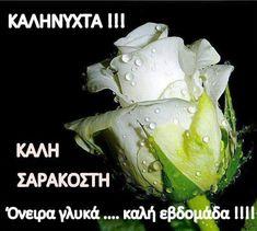 Picture Quotes, Vegetables, Happy, Roses, Vegetable Recipes, Ser Feliz, Veggies, Being Happy