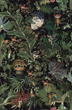 Tapeta Arte Moooi Menagerie of Extinct Animals Raven Tier Wallpaper, Animal Wallpaper, Home Wallpaper, Fabric Wallpaper, Pattern Wallpaper, Wallpaper Designs, Botanical Wallpaper, Botanical Art, Jugendstil Design