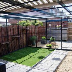 Cat Room, Animal House, Diy Stuffed Animals, Tiny House, Outdoor Structures, Pets, Outdoor Decor, House Ideas, Bird