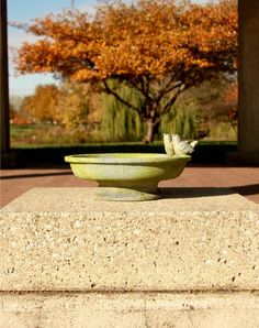 Small Bird Bath with Finches is small but elegant, and can be positioned almost anywhere