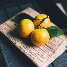 234 отметок «Нравится», 4 комментариев — Катя Деружинская (@deruzhinsky) в Instagram: «Новогодние элементы ☺️ Вы уже ждете Новый год? 🙈 Письма написали деду морозу? 🎅» Folk, Lime, Fruit, Lima, Popular, The Fruit, Fork, Key Lime, People