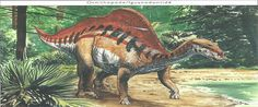 Ouranosaurus --- Site officiel : http://www.dinosauria.ca/