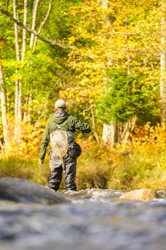 High Falls Gorge, Jump Park, Mountain Trails, Fly Fishing, The Great Outdoors, Bald Eagle, Scenery, Wildlife, The Incredibles