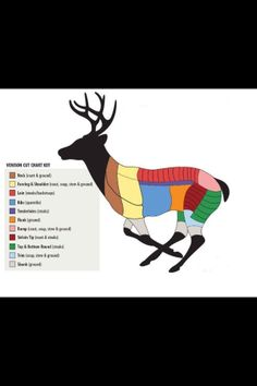 Venison Butchering Chart! Exactly what I was looking for