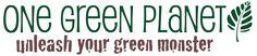 7 Fabulous Cruelty-Free Fashion Brands | One Green Planet