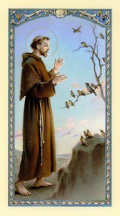 Francis of Assisi Catholic Art, Catholic Saints, Patron Saints, Religious Art, Francis Of Assisi, St Francis, Catholic Wallpaper, St Clare's, Vintage Holy Cards