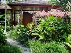 Rhapis excelsa underplanted with philodendron and liriope muscari