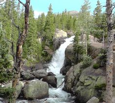 Alberta Falls is a beautiful hike in @Rocky Mountain National Park! waterfalls-hike