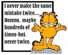 I never make the same mistake twice ...