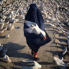 Ako Salemi @f64s125 Pigeon is the sym...Instagram photo | Websta (Webstagram)