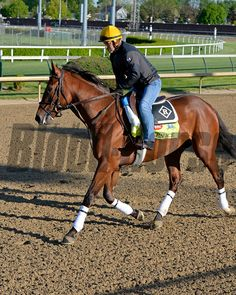 Caption: Keen Ice<br /> Horses on the track at Churchill Downs on Sun. April 27, 2015, in Louisville, Ky., in preparation for the Kentucky Derby and Kentucky Oaks.<br /> Works4_27_15 image814<br /> Photo by Anne M. Eberhardt