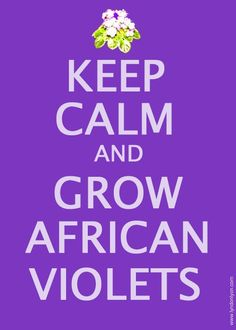Keep calm and grow African violets!