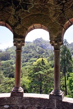 Quinta Da Regalaira, overlooking the forest below. Sintra, Portugal #travel #sintra #lisbon #portugal