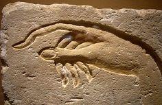 Hand of Akhenaten making an offering to Aten    Ancient Egypt, from Ashmunein  Dynasty 18  Sandstone    Metropolitan Museum of Art