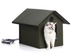 Gift Guide for the Cat Lover