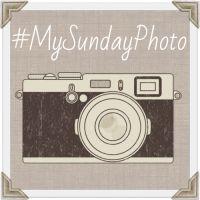 #SilentSunday & #MySundayPhoto 24th Aug 2014