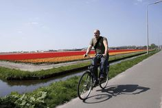 Cycling to Lose Weight and Tone Up: http://calorie-count.us/cycling-lose-weight/