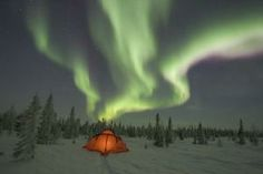 Travel Spotlight on Churchill, Manitoba, and Its Top 11 Attractions - Hopper Blog