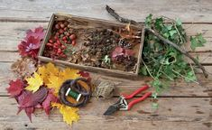 LandLove Magazine - Decorate with autumn's bounty Mobiles, Natural Materials, Crafts To Make, Art Pieces, Autumn, Seasons, Floral, How To Make, Decor