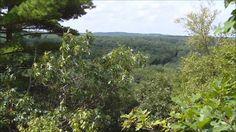 Beautiful view on top of Lookout Rock #LookoutRock #BlackstoneRiverandCanal #HeritageStatePark