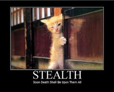 Baldurs Gate Meme Thread II: Enhanced Edition (Careful, everyone ...
