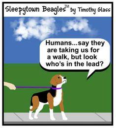 Sleepytown Beagles Cartoons / h.jpg