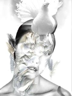 GIRL WITH CAMELLIAS AND PIGEON: Petals of creamy colored camellias, floating feathers and an inquisitive pigeon come together to create a truly surrealistic yet nonetheless sophisticated image.