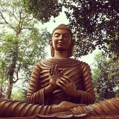 Kalinga Buddha Vihar, Unit-9. Not as big and popular as some other parks in the city, but it still lets you connect with your inner peace. Be sure to check to it out sometime. #bhubaneswar #odisha #orissa #buddha