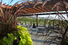 Five Cool #Okanagan Wineries for 2014. #bcwine