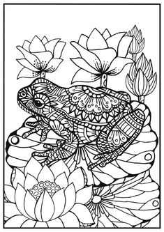 coloring for adults frog on a lily leaf Frog Coloring Pages, Coloring Book Art, Animal Coloring Pages, Printable Coloring Pages, Coloring Sheets, Mandala Art, Mandala Design, Cat Icon, Frog Art