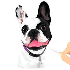 Pet Pillow Factory | Customized Products Featuring Your Pet